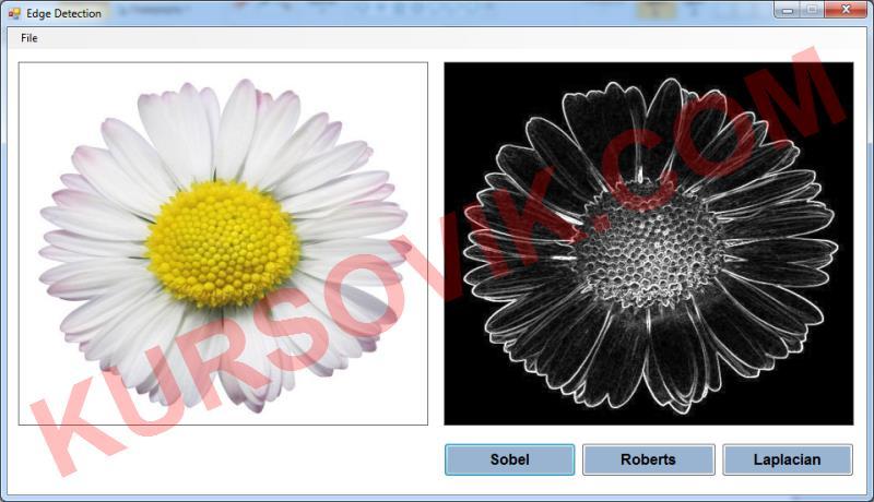 Алгоритмы интеллектуальной обработки цифровых изображений (метод Собеля, метод Робертса, метод Лапласа)